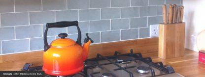 Grace 150 x 75 Ceramic Tiles