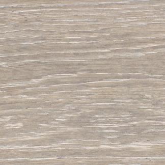 Oak Seashell Design Trend